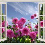 Fenster Günstig Kaufen Fenster Fenster Gnstig Online Kaufen Dassolltensielesende Schüco Günstige Schlafzimmer Günstig Betten Sichtschutzfolie Für In Polen Tauschen Sofa Verkaufen