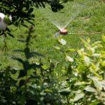 Garten Rasenbewsserung Im Sommer Besten Systeme Welt Trampolin Liegestuhl Relaxsessel Lärmschutzwand Eckbank Wasserbrunnen Essgruppe Klapptisch Trennwände Garten Bewässerungssystem Garten