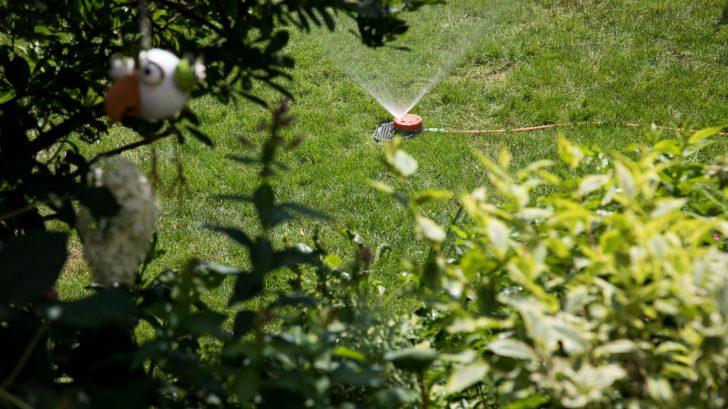 Medium Size of Garten Rasenbewsserung Im Sommer Besten Systeme Welt Trampolin Liegestuhl Relaxsessel Lärmschutzwand Eckbank Wasserbrunnen Essgruppe Klapptisch Trennwände Garten Bewässerungssystem Garten