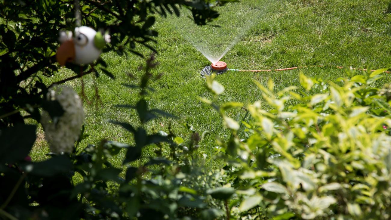 Full Size of Garten Rasenbewsserung Im Sommer Besten Systeme Welt Trampolin Liegestuhl Relaxsessel Lärmschutzwand Eckbank Wasserbrunnen Essgruppe Klapptisch Trennwände Garten Bewässerungssystem Garten