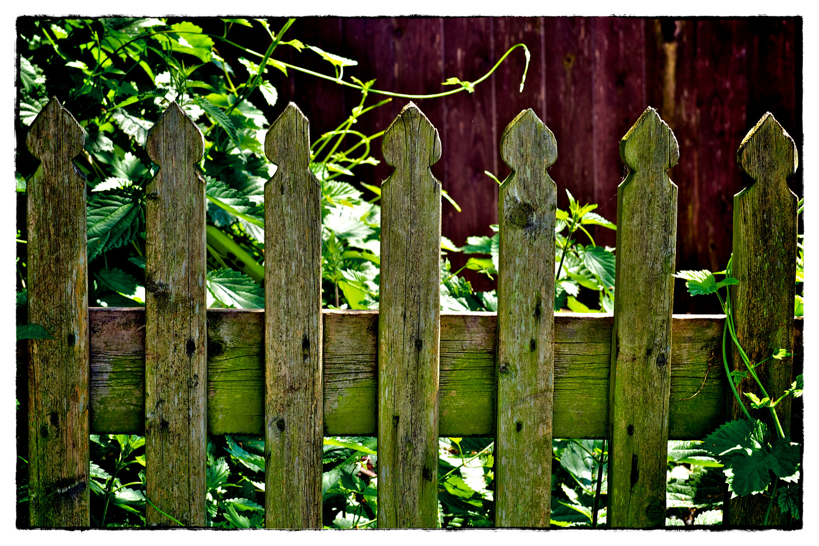 Full Size of Garten Zaun Alter Gartenzaun Foto Bild Landschaft Trampolin Ecksofa Lärmschutz Sichtschutz Holz Relaxsessel Paravent Mastleuchten Bewässerung Lärmschutzwand Garten Garten Zaun