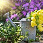 Bewässerungssystem Garten Garten Bewsserung Im Garten Ohne Wasser Geht Es Nicht Sonnensegel Sichtschutz Bewässerungssystem überdachung Schallschutz Wohnen Und Abo Pergola Feuerstelle