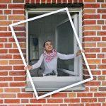 Insektenschutzgitter Fenster Insektenschutz Fliegengitter 120x100cm Alu Rahmen Mit Sprossen Weru Preise Meeth Standardmaße Dreifachverglasung Aluminium Folie Fenster Insektenschutzgitter Fenster