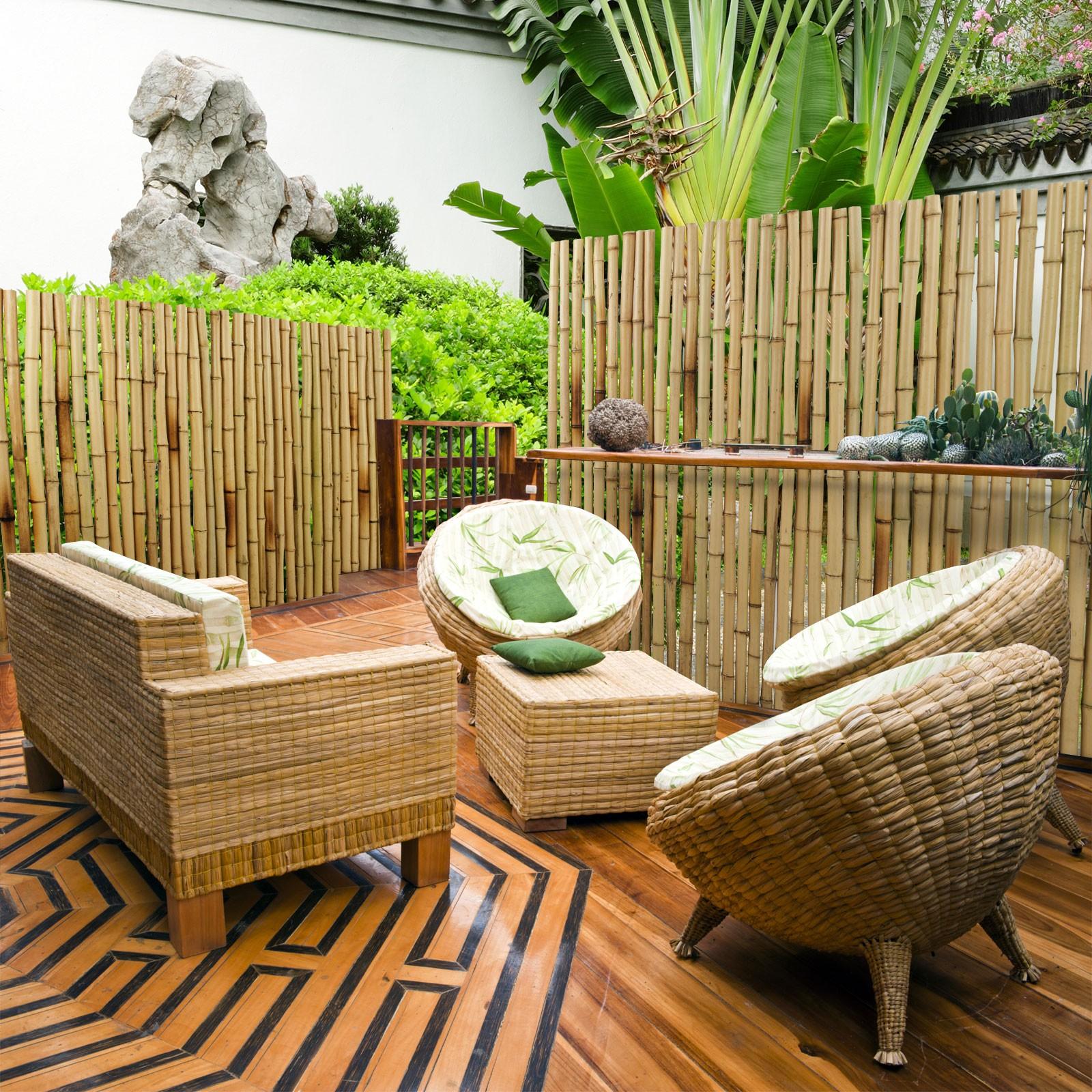 Full Size of Sichtschutz Garten Bambus Natur 3 Gren Phyllostachys Glauca Pool Im Bauen Lärmschutzwand Ecksofa Spaten Trennwände Brunnen Aufbewahrungsbox Und Garten Sichtschutz Garten