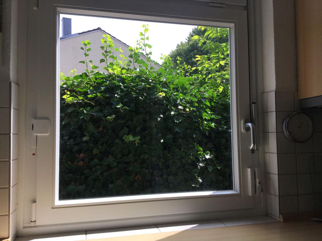 Full Size of Fenster Einbruchschutz Fenstersicherung Hamburg Alles Klar Ab 49 Jalousien Holz Alu Rc 2 Beleuchtung Veka Drutex Insektenschutz Für Fliegennetz Velux Fenster Fenster Einbruchschutz