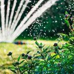 Bewässerungssystem Garten Garten Bewässerungssystem Garten Gieen Im Sommer 1a Zitzelsberger In Ingolstadt Blog Vertikaler Hochbeet Spielgeräte Loungemöbel Holz Rattenbekämpfung Liegestuhl