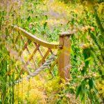 Garten Zaun Widlflower Lndliche Outdoor Landschaft Sonnig Bewässerungssysteme Test Pool Guenstig Kaufen Hochbeet Lounge Möbel Feuerschale Holztisch Garten Garten Zaun