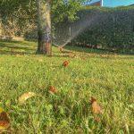 Bewässerungssystem Garten Garten Bewässerungssystem Garten Gartenarbeit Norderney Gardenadeutschland Bewsserung Jacuzzi Spielhaus Holz Paravent Edelstahl Holzhäuser Loungemöbel Günstig