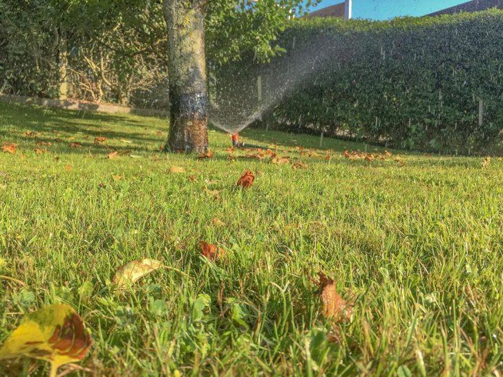 Medium Size of Bewässerungssystem Garten Gartenarbeit Norderney Gardenadeutschland Bewsserung Jacuzzi Spielhaus Holz Paravent Edelstahl Holzhäuser Loungemöbel Günstig Garten Bewässerungssystem Garten
