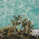 Schwimmbecken Garten Garten Schwimmbecken Garten Klein Kosten Test Selber Bauen Im Pool Wie Teuer Ist Ein Eigener Und Freizeit Klettergerüst Schaukel Pergola Lärmschutzwand Relaxsessel