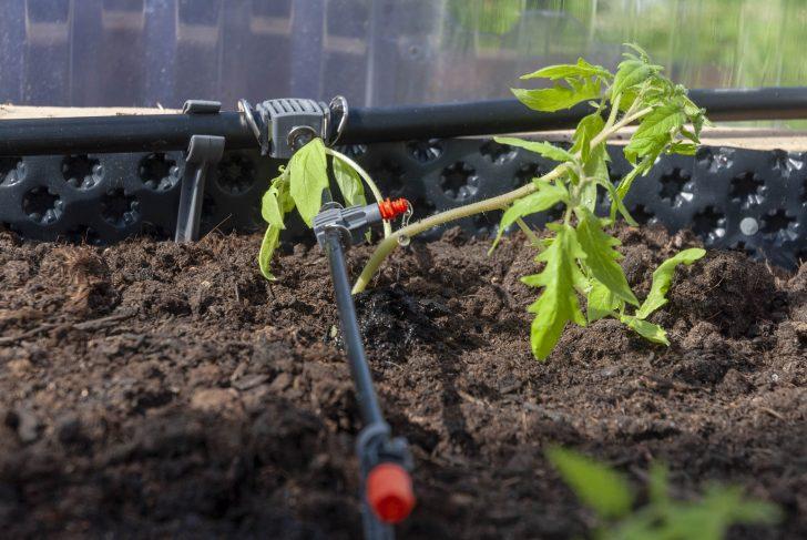 Medium Size of Bewsserung Im Gewchshaus So Installiert Ihr Ein Micro Drip System Spielgerät Garten Loungemöbel Günstig Klapptisch Holzhaus Zaun Sonnenschutz überdachung Garten Bewässerungssysteme Garten