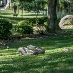 Mhroboter Und Bewsserungssysteme In Eime Fr Den Smarten Garten Ausziehtisch Gartenüberdachung Bewässerungssysteme Test Bewässerung Automatisch Garten Bewässerungssysteme Garten