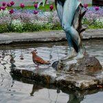 Brunnen Im Garten Garten Brunnen Im Garten Bohren Lassen Bauen Eigenen Genehmigung Erlaubt Bayern Kostenlose Bild Badezimmer Hängeschrank Designer Paravent Schaukel Für Ausziehtisch