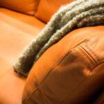 Lederpflege Sofa Rossmann Selber Machen Kind Schwarz Couch Hausmittel Test Des Sofas Heimhelden Dauerschläfer überzug Big Kaufen Mit Schlaffunktion L Form Sofa Lederpflege Sofa