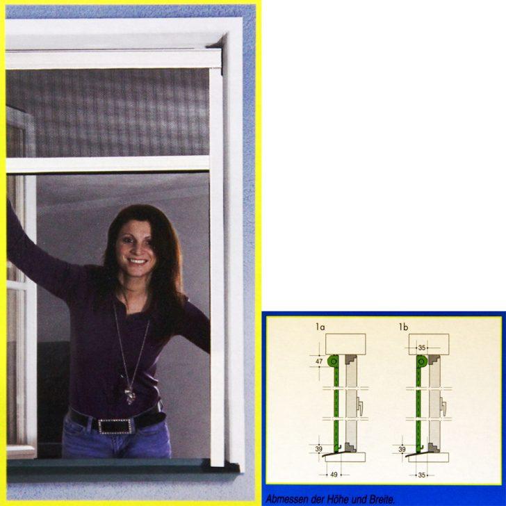 Medium Size of Rollo Fenster Fliegengitter Insektenschutz O Tr Netz Klemmrollo Maße Rc3 Alte Kaufen Rahmenlose Herne Sicherheitsbeschläge Nachrüsten Absturzsicherung Fenster Rollo Fenster
