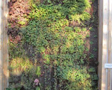Vertikal Garten Garten Vertical Gardening Vegetables Garden Plants Images Book Pdf Tower Construction Details Vegetable Vertikal Garten Balkon Wall Diy Berlin Der Mnchner Grtner