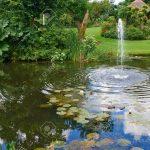 Wasserbrunnen Garten Garten Brunnen Garten Stein Antik Solar Amazon Wasserbrunnen Bohren Steinoptik Gartenbrunnen Steine Pumpe Obi Kugel Selber Bauen Schaukelstuhl Kugelleuchten