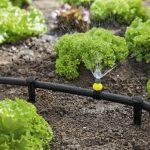 Gartenüberdachung Wassertank Garten Bewässerung Eckbank Trennwände Lärmschutzwand Bewässerungssysteme Paravent Aufbewahrungsbox Feuerstelle Im Garten Bewässerung Garten