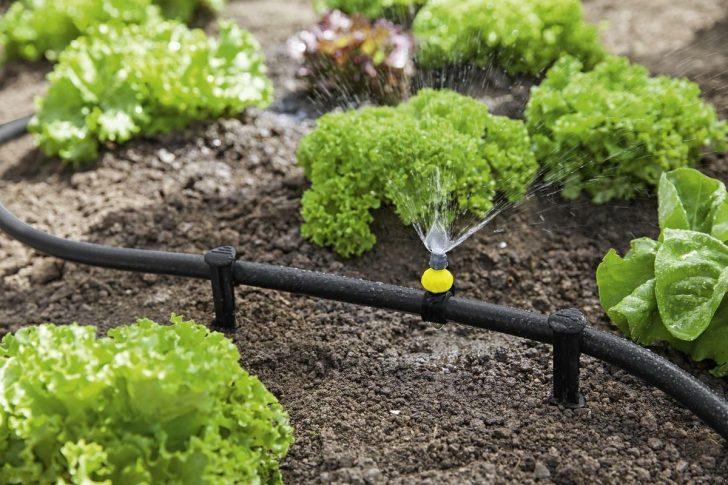 Medium Size of Gartenüberdachung Wassertank Garten Bewässerung Eckbank Trennwände Lärmschutzwand Bewässerungssysteme Paravent Aufbewahrungsbox Feuerstelle Im Garten Bewässerung Garten
