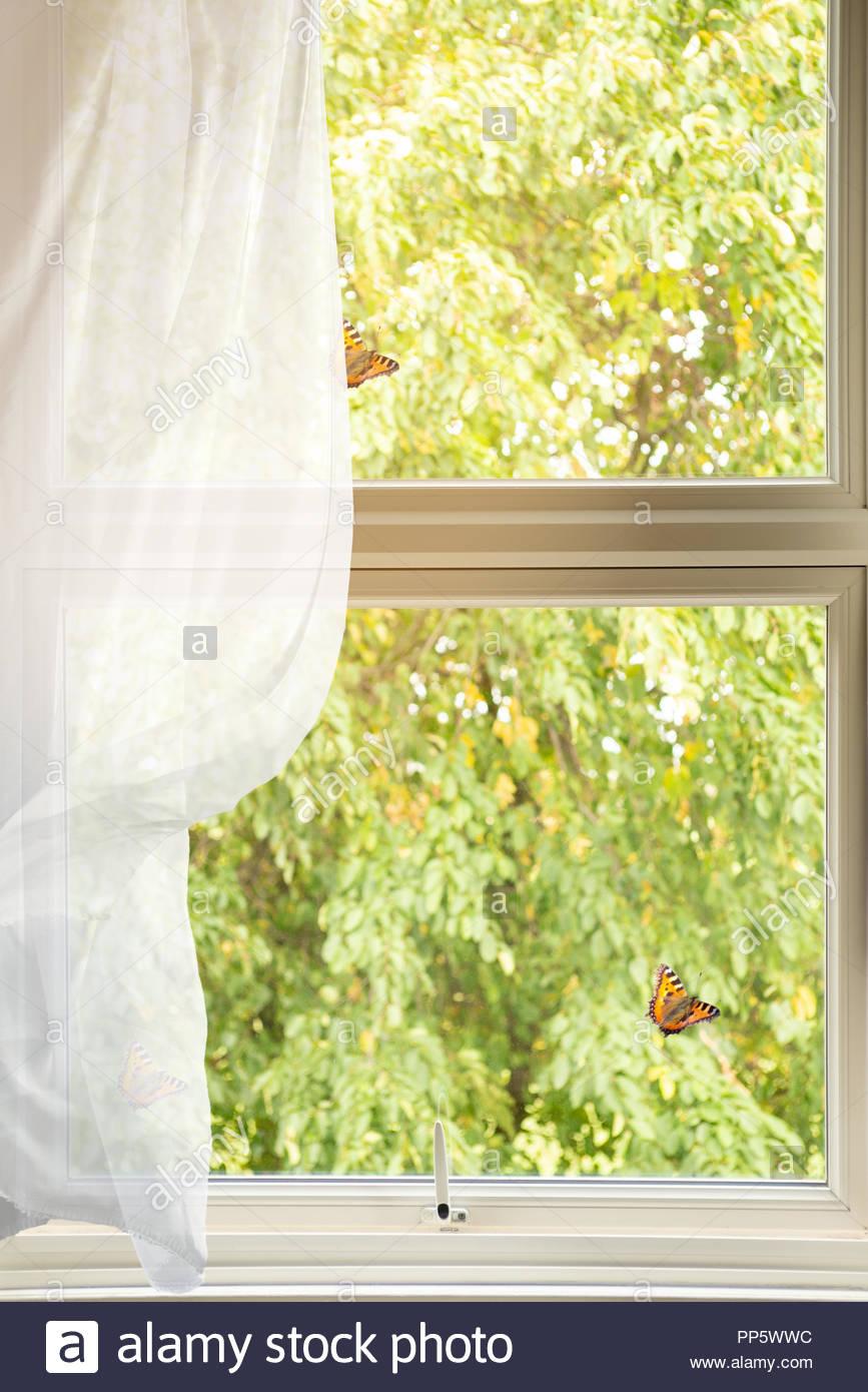 Full Size of Landhaus Fenster Einbruchsicherung Einbruchsicher Nachrüsten Meeth Günstige Rc 2 Landhausküche Grau Bauhaus Tauschen Online Konfigurieren Fototapete Holz Fenster Landhaus Fenster