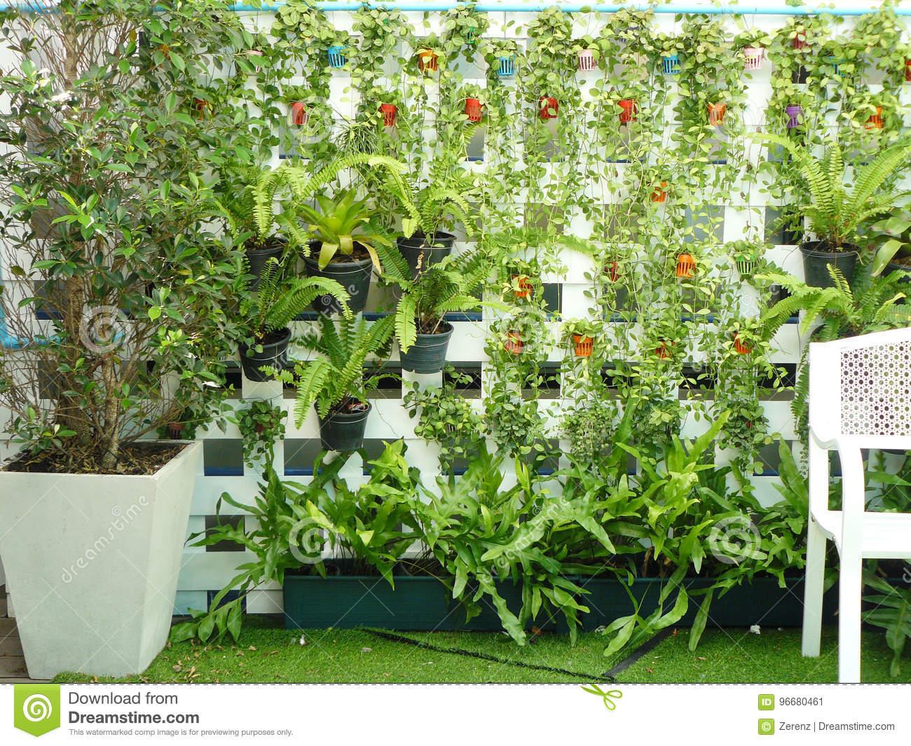 Full Size of Vertikal Garten Vertikaler Stockbild Bild Von Latte Sitzgruppe Led Spot Gartenüberdachung Relaxsessel Bewässerung Automatisch Holztisch Pavillion Garten Vertikal Garten