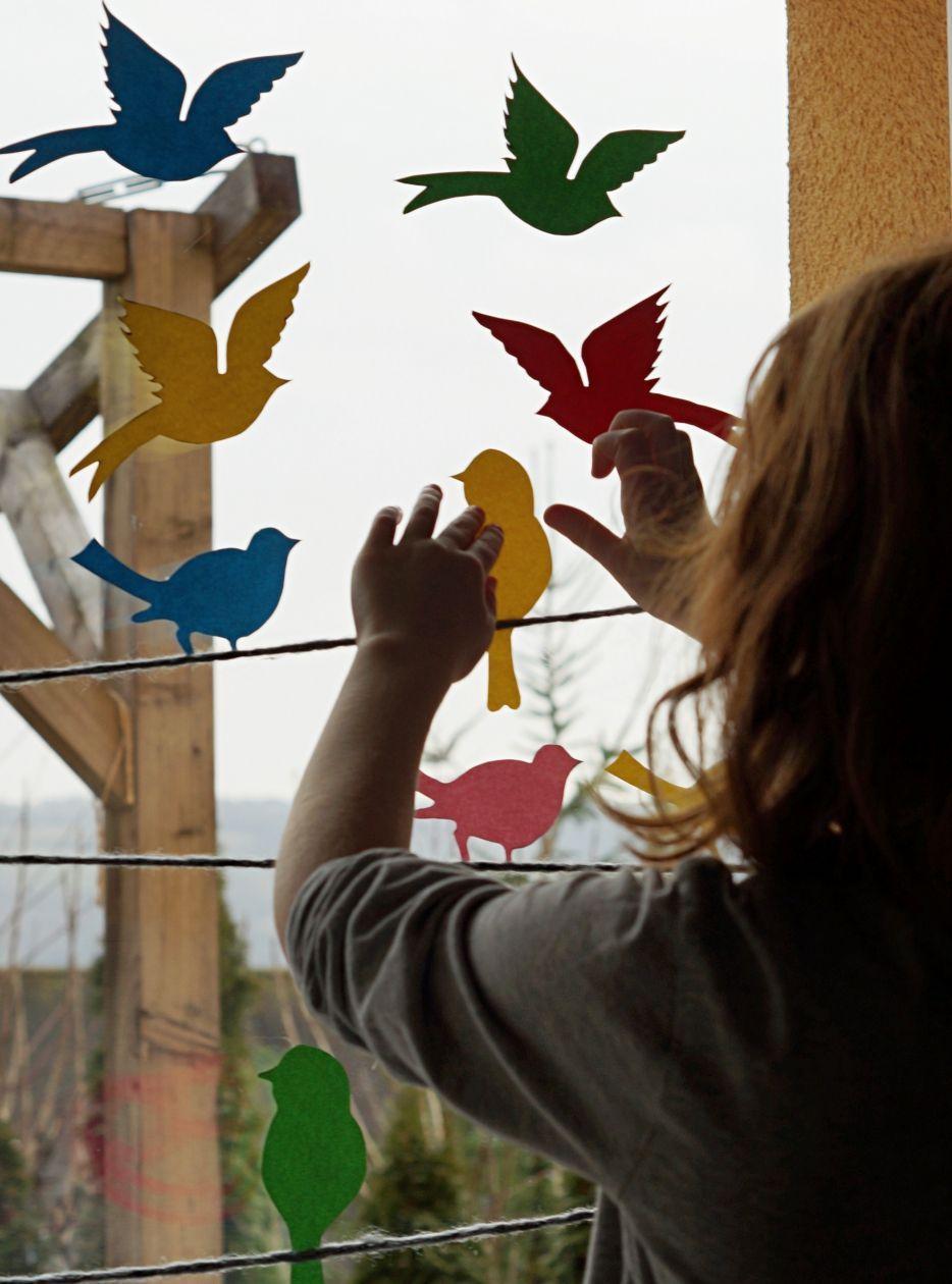 Full Size of Fenster Trier Hallo Frhling Von Einem Bunten Vogelparadies An Unserem Winkhaus 120x120 Velux Rc3 Schallschutz Fliegennetz Herne Mit Lüftung Gitter Fenster Fenster Trier