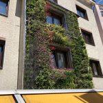 Vertikal Garten Garten Vertical Garden Indoor Kit Book Pdf Vertikal Garten Innen Plants Gardening Images Berlin Selber Bauen Plans Design In India Tower System Vegetables Wall Diy