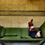 Grünes Sofa Sofa Grünes Sofa Grnes Foto Bild Reportage Dokumentation Stressless 2 Sitzer Mit Schlaffunktion Goodlife Beziehen Leinen Dreisitzer Comfortmaster U Form