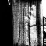 Fenster Welten Fenster Fenster Welten Fensterwelten Foto Bild Monochrom Fliegengitter Maßanfertigung Mit Integriertem Rollladen Sonnenschutz Außen Trier Eingebauten Rolladen