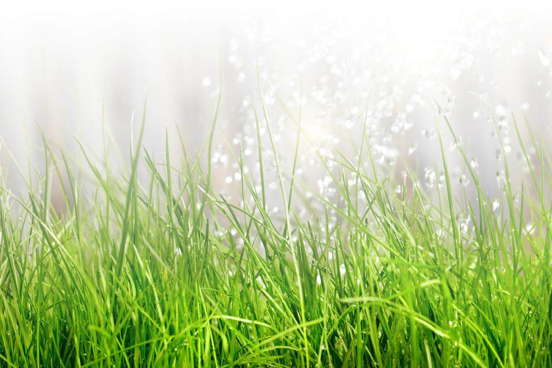 Large Size of Bewässerungssystem Garten Gartenbewsserung Einfach Professionell Selbst Verlegen Schwimmingpool Für Den Klettergerüst Loungemöbel Holz Schallschutz Garten Bewässerungssystem Garten