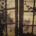 Fenster Verdunkelung Fenster Fenster Verdunkelung Gardinen Schallschutz Einbau Sicherheitsfolie Sonnenschutzfolie Innen Bauhaus Jalousien Salamander Online Konfigurieren Jemako