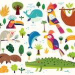 Wandtattoo Kinderzimmer Mit Tieren Ber 20 Coole Tiermotive Regale Regal Sofa Weiß Kinderzimmer Wandaufkleber Kinderzimmer
