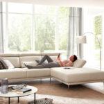 Sofa Stoff Grau Sofa 3er Sofa Grau Stoff Grober Meliert Reinigen Grauer Graues Schlaffunktion Chesterfield Kaufen Ikea Couch Sofas Big Gebraucht Bunt Garten Ecksofa Arten