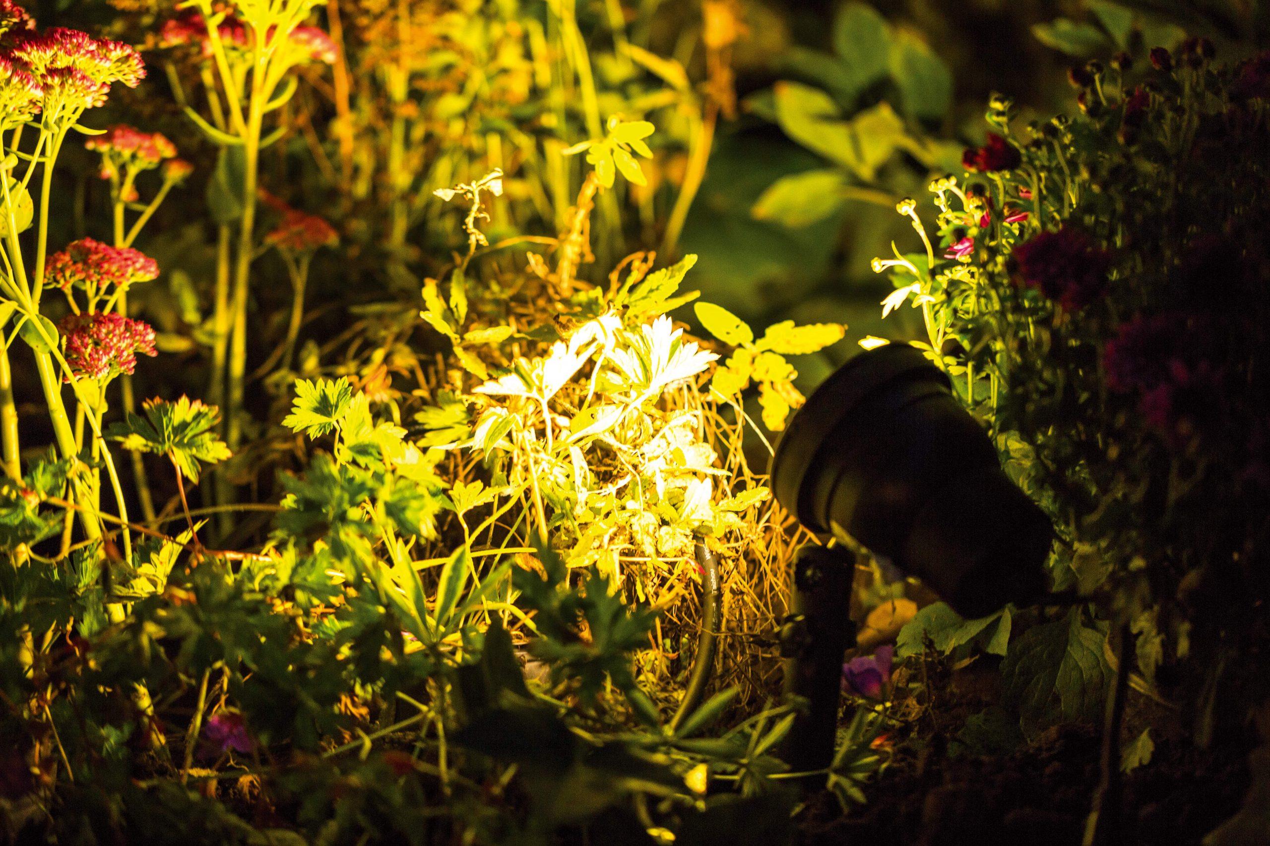 Full Size of Richtige Auenbeleuchtung Rund Ums Haus Ratgeber Obi Garten Loungemöbel Holz Relaxliege Kletterturm Pavillon Feuerstellen Im Ausziehtisch Trampolin Spielturm Garten Mastleuchten Garten
