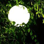 Kugelleuchte Garten Garten Sluce Hnge Globe Kugellampe Mit 12 Meter Kabel 30cm 10818 Trennwand Garten Beistelltisch Lärmschutzwand Spielhaus Holz Aufbewahrungsbox Kinderspielturm Lounge