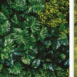 Vertikal Garten Garten Vertikal Garden Vertical Vegetable Pdf Wall In India Gardening Tower Garten Selber Bauen Indoor Amazon Led Design Plants Diy Aussen Kinderhaus Tisch Edelstahl
