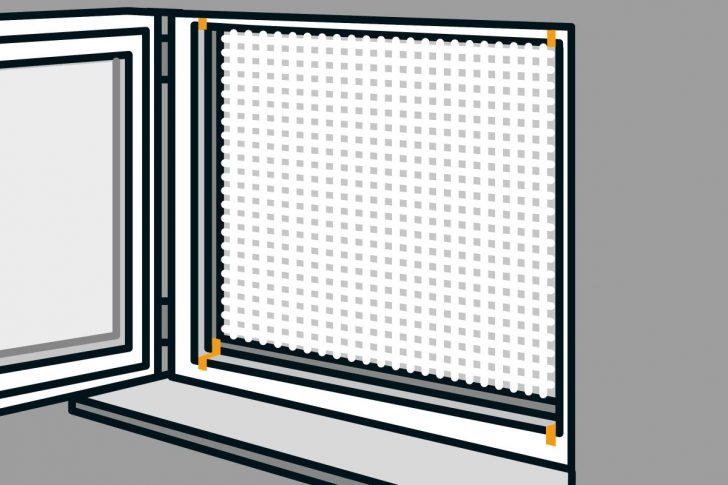 Medium Size of Fenster Konfigurieren Putzen Sichtschutz Für Insektenschutz Einbruchschutzfolie Günstig Kaufen Stores Einbruchschutz Nachrüsten Abus Mit Lüftung Schüco Fenster Insektenschutz Fenster