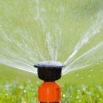 Bewässerung Garten Garten Tipps Fr Richtige Bewsserung Dehner Bewässerungssysteme Garten Test Paravent Versicherung Kinderhaus Bewässerung Loungemöbel Holz Skulpturen Mini Pool