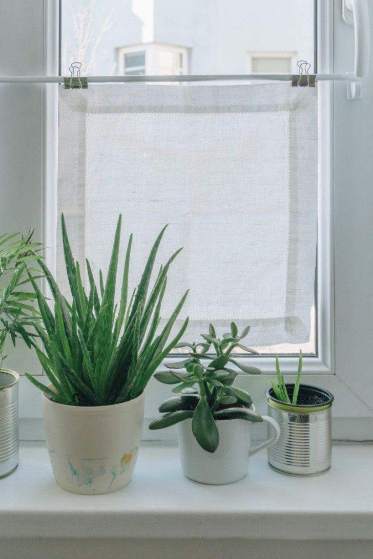 Medium Size of Sichtschutz Für Fenster Fenstergestaltung Wohnzimmer Inspirierend Diy Mini Rollos Regal Dachschräge Velux Kaufen Einbruchschutz Vinyl Fürs Bad Fenster Sichtschutz Für Fenster