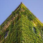 Vertikal Garten Garten Vertikal Garden Vertical Book Pdf Adalah Diy Gardening Definition Indoor System Pots Lounge Set Garten Holzhaus Spielgeräte Sonnenschutz Beistelltisch Pergola