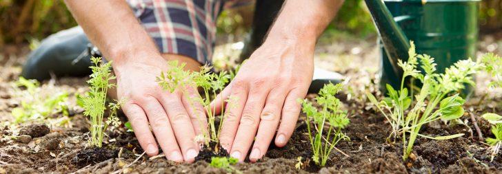 Medium Size of Garten Versicherung Devk Versicherungen Allianz Ergo Huk24 Versichern Generali Vergleich Check24 Huk Kinderschaukel Relaxliege Mini Pool Feuerstelle Im Garten Garten Versicherung