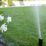 Bewässerungssystem Garten Garten Bewässerungssystem Garten Automatische Gartenbewsserung Fh Bewsserung Edelstahl Wohnen Und Abo Schaukelstuhl Kugelleuchten Schwimmingpool Für Den