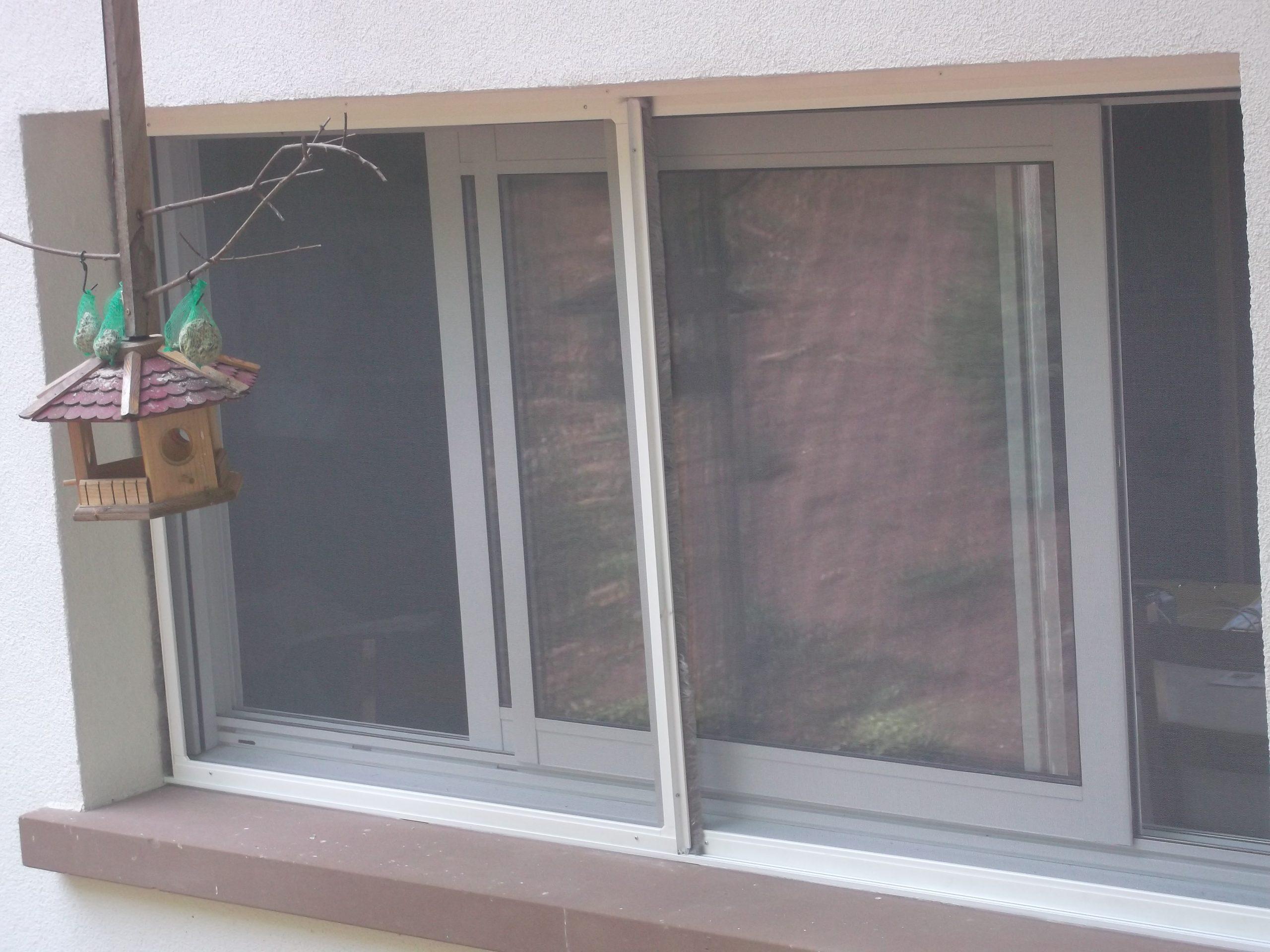 Full Size of Insektenschutzgitter Katzen Hundegewebe Fenster Marken Rolladen Herne Einbruchschutz Winkhaus Insektenschutz Für Velux Einbauen Fliegengitter Maßanfertigung Fenster Fliegengitter Fenster Maßanfertigung