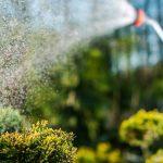Bewässerung Garten Garten Bewässerung Garten Wasser Marsch Richtige Bewsserung Fr Den Gartenüberdachung Spielhaus Holz Sitzbank Ecksofa Schwimmingpool Für Kugelleuchte Trennwand