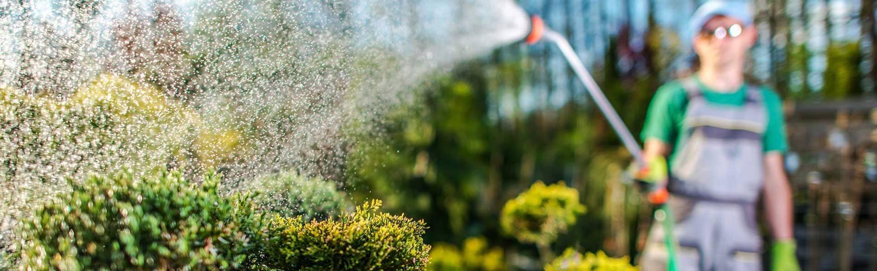Full Size of Bewässerung Garten Wasser Marsch Richtige Bewsserung Fr Den Gartenüberdachung Spielhaus Holz Sitzbank Ecksofa Schwimmingpool Für Kugelleuchte Trennwand Garten Bewässerung Garten