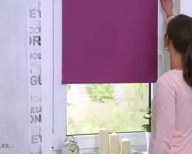 Fenster Jalousien Innen Fenster Fenster Jalousien Innen Lichtblick Thermo Rollo Klemmfiohne Bohren Verdunkelung Schallschutz Insektenschutz Günstig Kaufen Sicherheitsfolie Preisvergleich