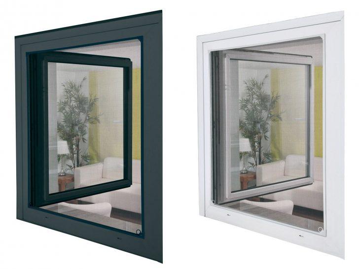 Medium Size of Fliegennetz Fenster Fliegengitter Magnet Innen Anbringen Erneuern Kosten Mit Eingebauten Rolladen Bauhaus Insektenschutz Ohne Bohren Austauschen Dreh Kipp Fenster Fliegennetz Fenster
