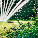 Gieen Im Sommer 1a Garten Zitzelsberger In Ingolstadt Blog Bewässerungssysteme Test Hängesessel Holzhaus Schaukel Für Klappstuhl Spielhaus Kunststoff Wohnen Garten Bewässerung Garten