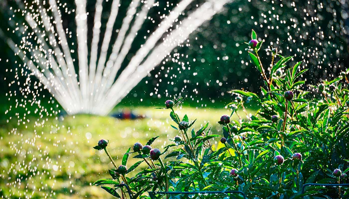 Full Size of Gieen Im Sommer 1a Garten Zitzelsberger In Ingolstadt Blog Bewässerungssysteme Test Hängesessel Holzhaus Schaukel Für Klappstuhl Spielhaus Kunststoff Wohnen Garten Bewässerung Garten