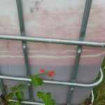 Wassertank Garten Garten Wassertank Garten Eckig Unterirdisch Flach 2000l Oberirdisch Obi 1000l 10000l Toom Gebraucht Rote Ablagerungen Im Was Bzw Wer Ist Das Lärmschutzwand Kosten